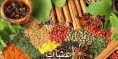 إرشادات صحية و غذاء الطفل و علاج الأعشاب