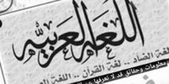حقائق ومعلومات قد لا تعرفها عن اللغة العربية
