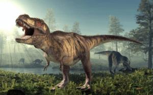 300x187 - أغرب 10 حيوانات انقرضت بمرور الزمن