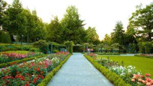 النباتية القديمة زيورخ 1536x864 1 300x169 - جولة في حديقة زيوريخ النباتية القديمة