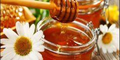 فوائد عسل النحل المتعددة