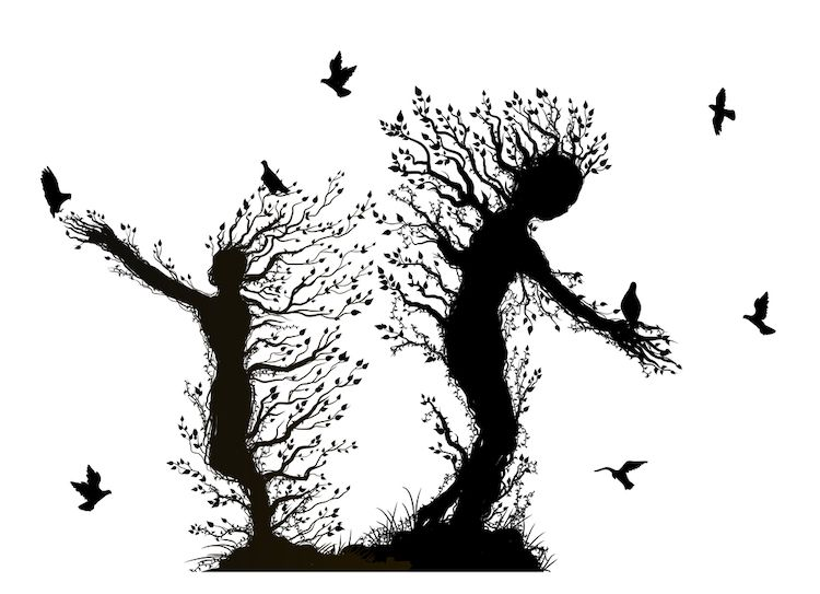 تناسخ الأرواح : الأختين بولوك وقصة أغرب من الخيال