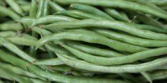 فوائد الفاصوليا الخضراء.. تقلل أعراض الاكتئاب وتزيد نسبة الخصوبة