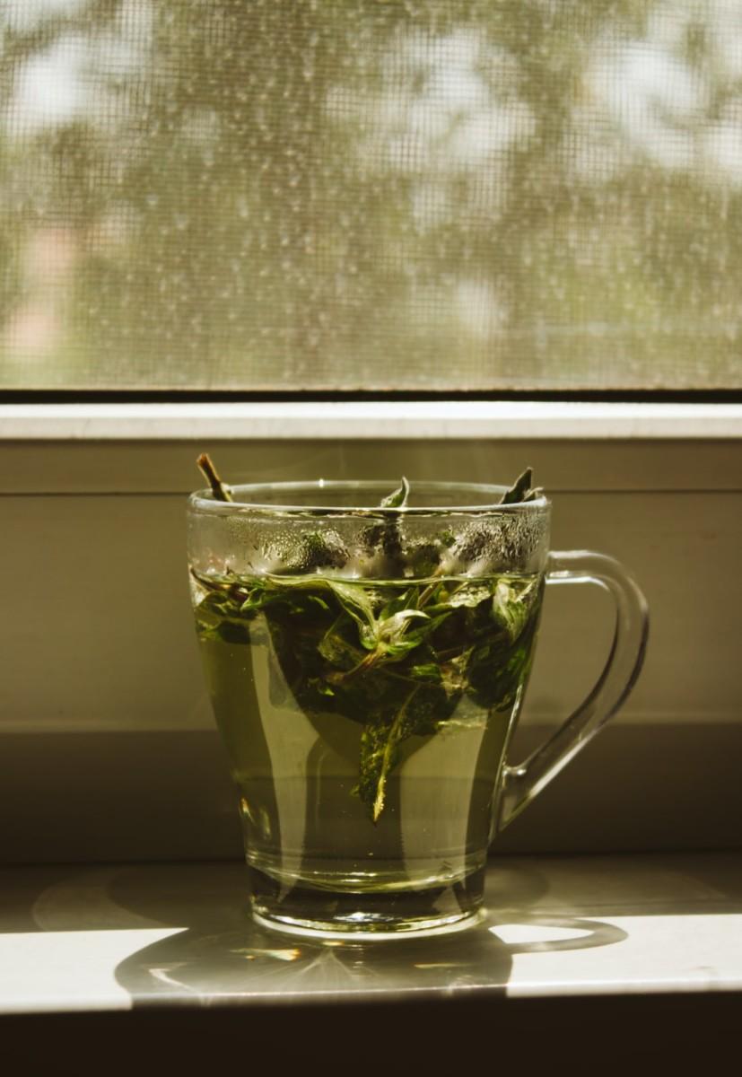 photo 1498481548071 4d439c62cd6e - فوائد الشاي الأخضر