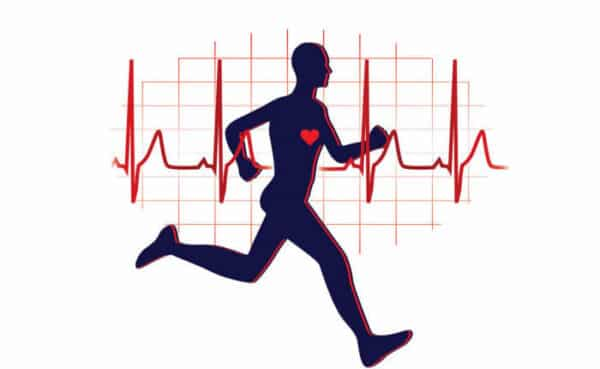 عدد ضربات القلب بعد الجري 1 e1615748629224 - زيادة عدد ضربات القلب بعد الجري وبذل مجهود