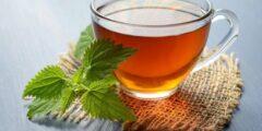 هل تقومي برمي أكياس الشاي بعد شربه ؟