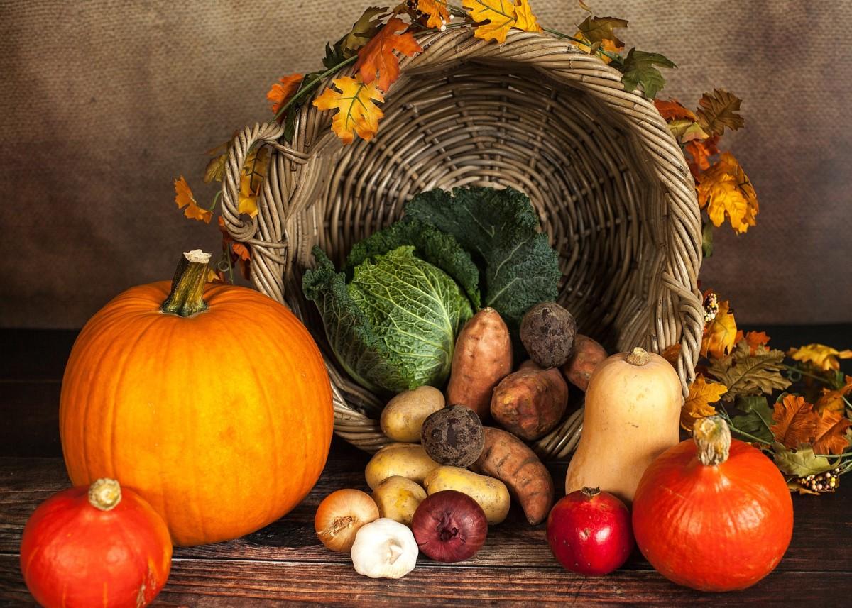 pumpkin 1768857 1920 1 -