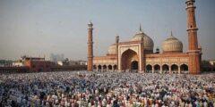 ما هي اهم المعلومات التي تريد ان تعرفها عن تاريخ الهند الاسلامي؟