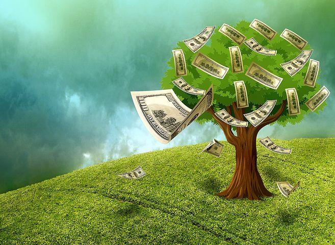 كيفية تحقيق الثروة